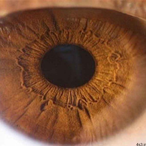 چرا چشم قهوهایها قابل اعتمادترند؟ سایت 4s3.ir