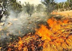 ۳۰۰ هکتار از جنگل ها و مراتع گچساران در آتش سوخت/ مهار ۹۵درصدی آتش سوزی سایت 4s3.ir
