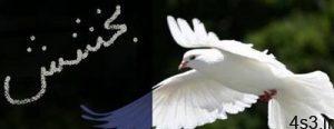 بخشنده ترین مردم در نگاه امام حسین علیه السلام سایت 4s3.ir
