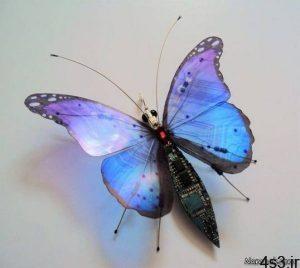 حشرات دوربین داری که جاسوسی میکنند + تصاویر سایت 4s3.ir