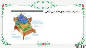 زیست دهم فصل 6 گفتار 1 ساختار و سلول گیاهی سایت 4s3.ir